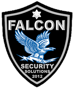 Falcon Security solutions